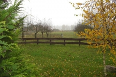 Bungalow 1 und 2 November 2009 019